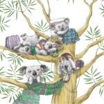Папоротная Инна (Беларусь, г. Гродно). «Семейство коала»